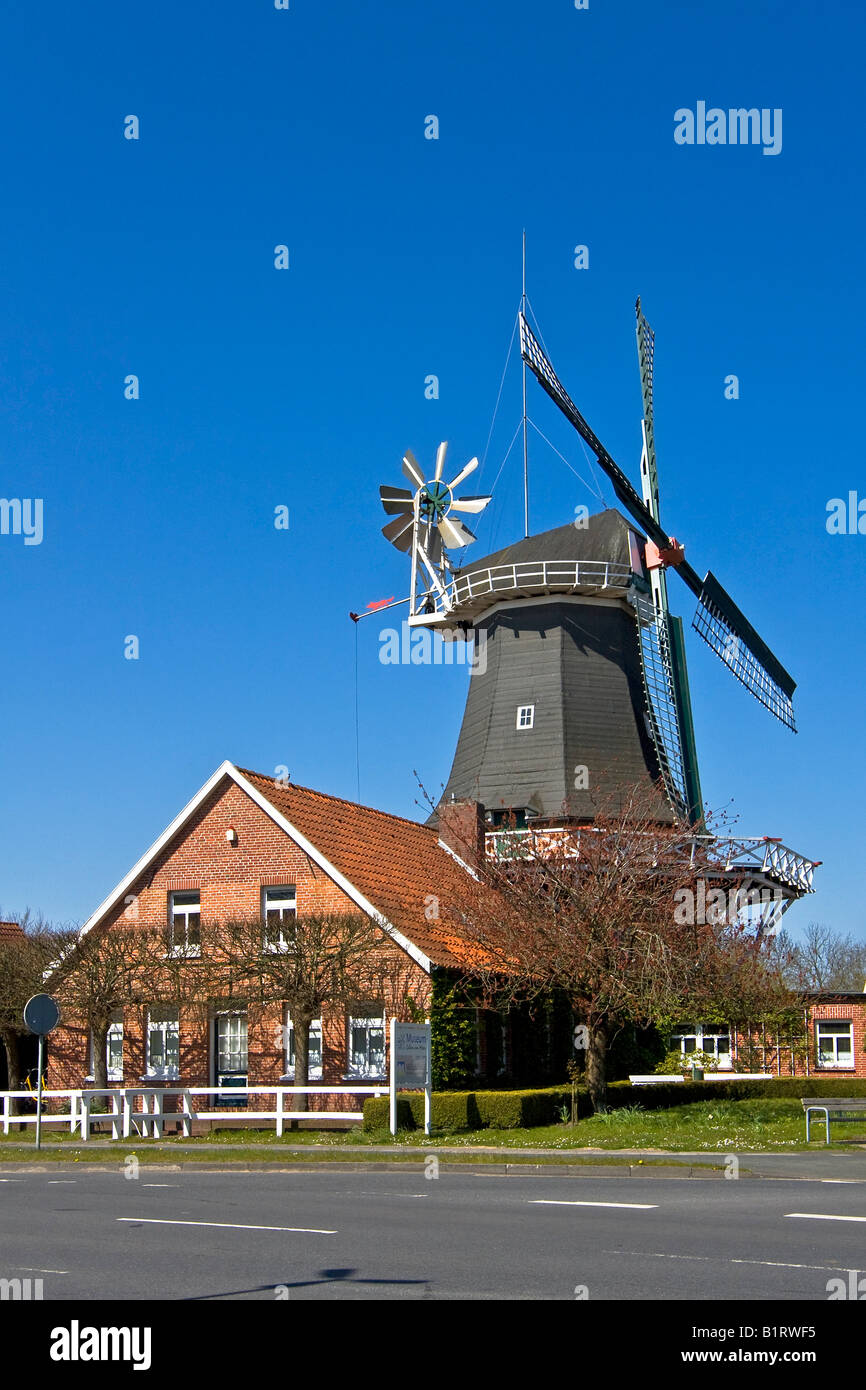 Historical windmill build in typical Dutch style showing the fantail at the back, husking mill, Esens, East Frisia, Stock Photo