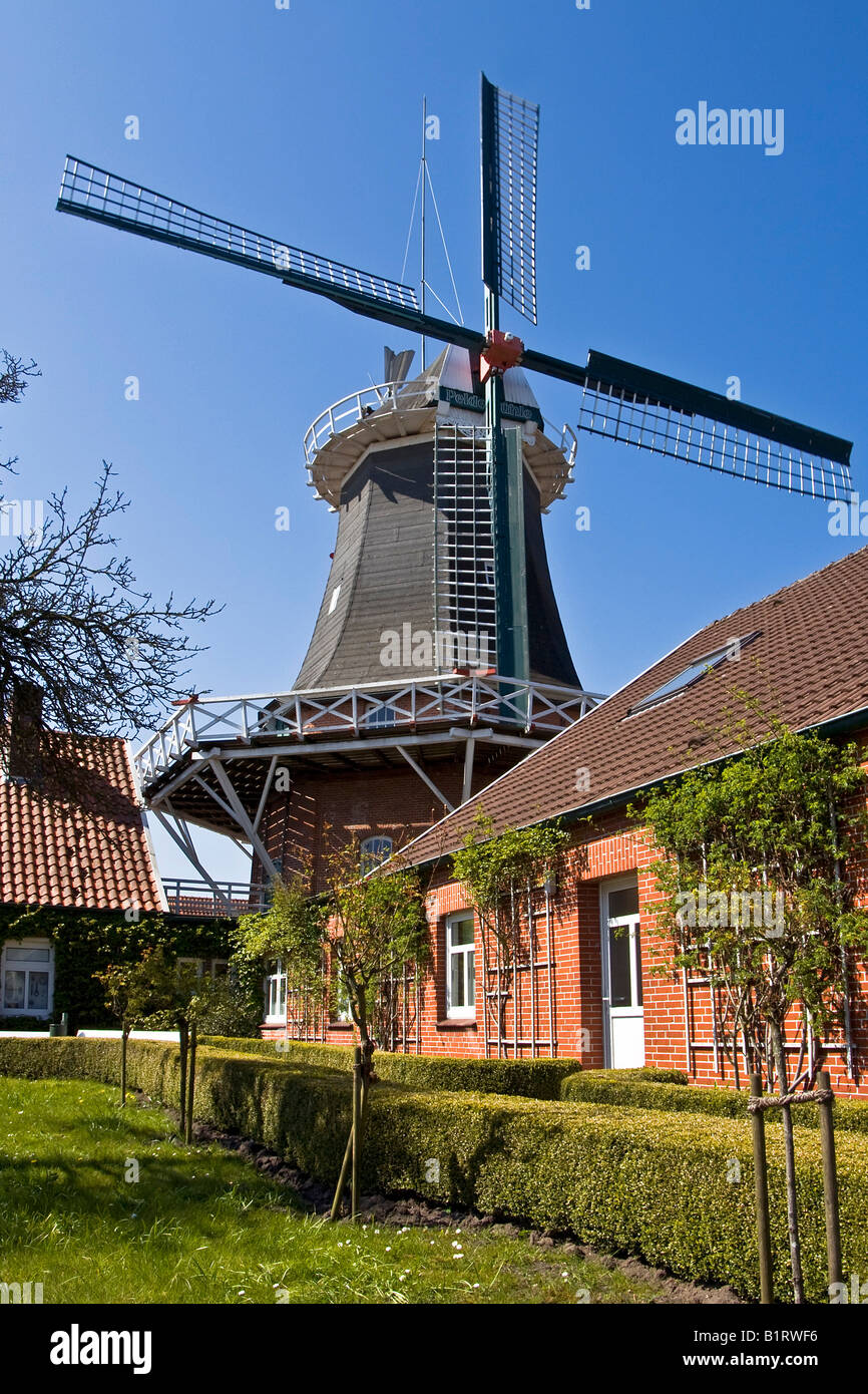 Historical windmill build in typical Dutch style with the fantail at the back, husking mill, Esens, East Frisia, Stock Photo