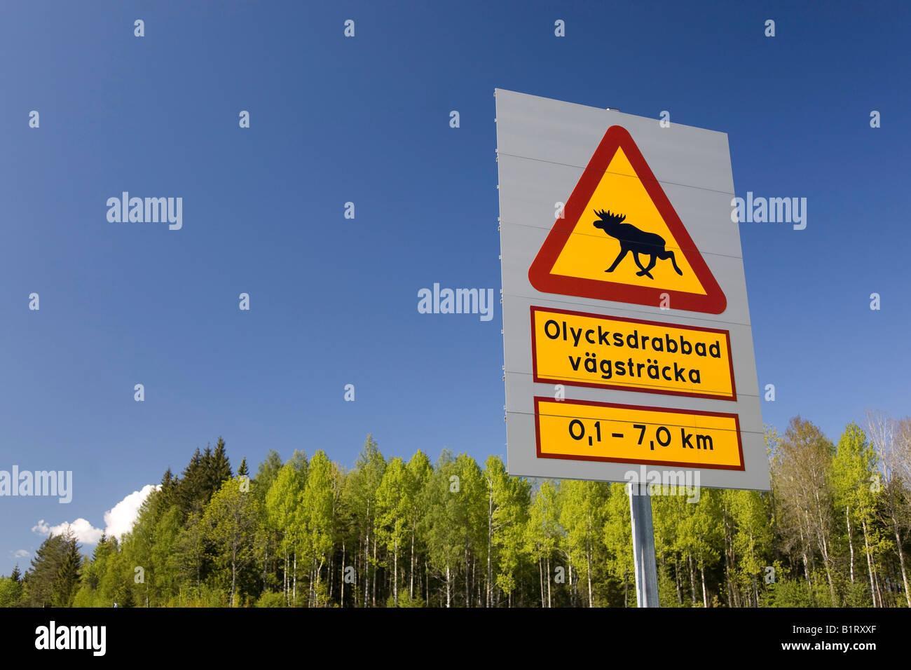 Warning Sign Elk Crossing Sweden Scandinavia Europe