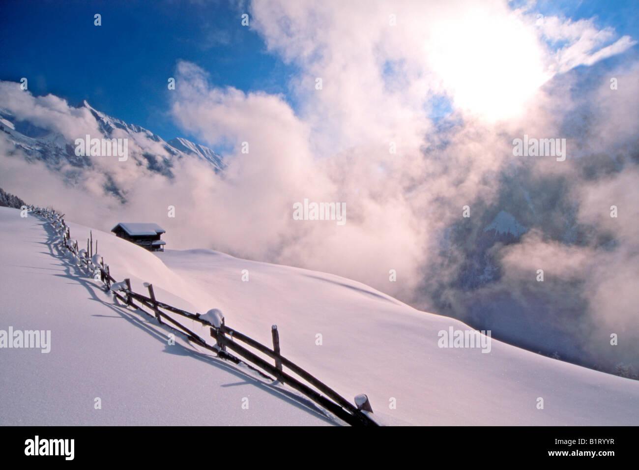 Barn in the snow, Brandberg, Zillertal Valley, Tirol, Austria, Europe Stock Photo