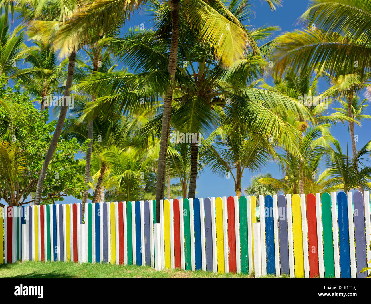 Dominican Republic Punta Cana Bavaro Beach multi colored picket fence and palm trees - Stock Image