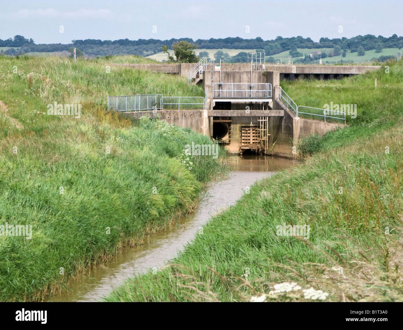 Sluice gate controlling land drainage and flood prevention leading out to a river in the Marshland area of East - Stock Image