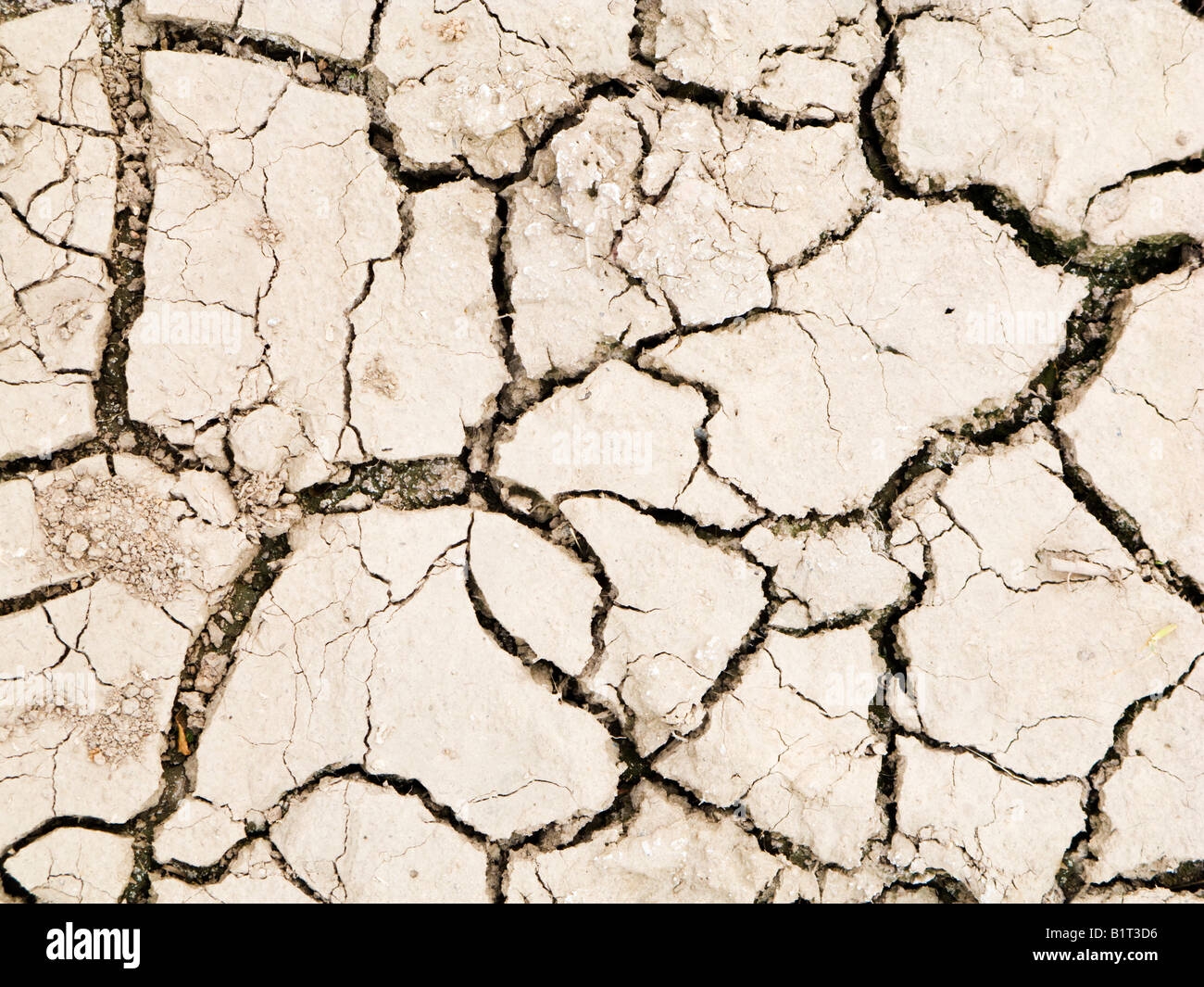 Cracked dry earth - Stock Image