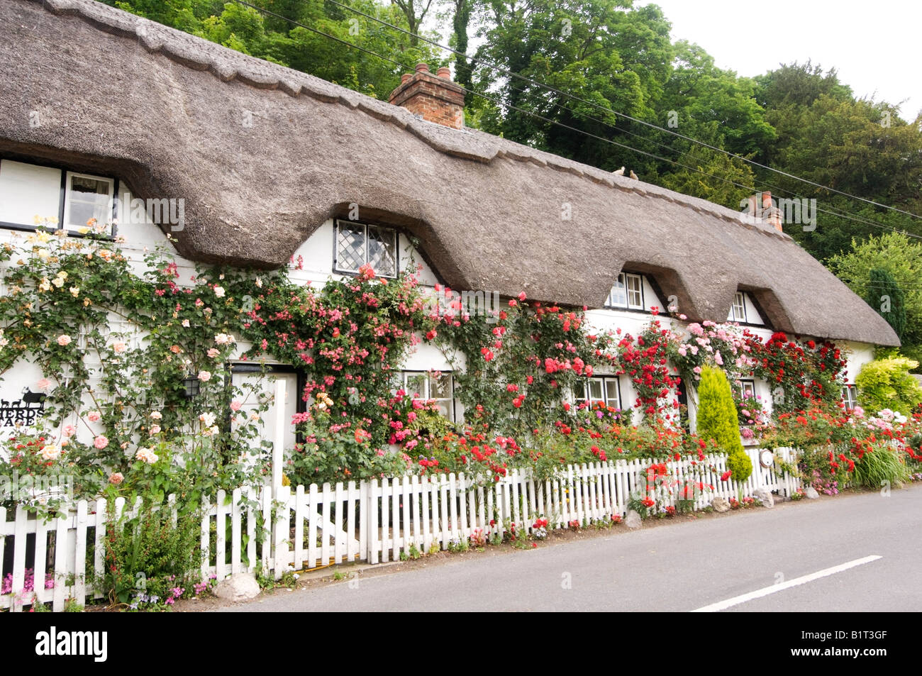 Thatched Roof Cottage Wherwell Hampshire UK Stock Photo