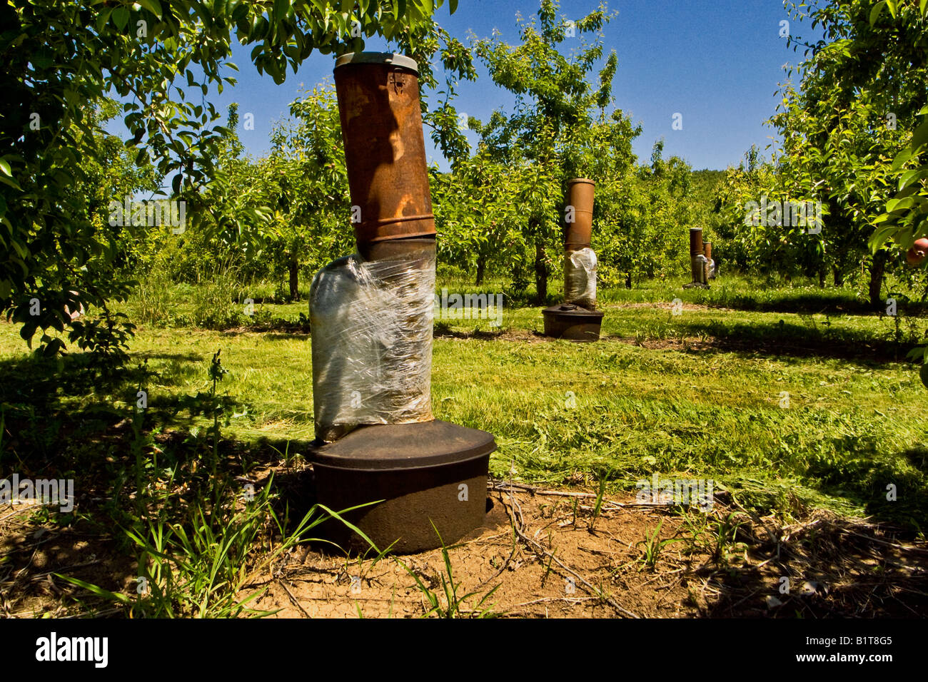 oil fired smudge pots are distributed throughout a fruit orchard in Ashland Oregon Note the side mounted rebreather - Stock Image