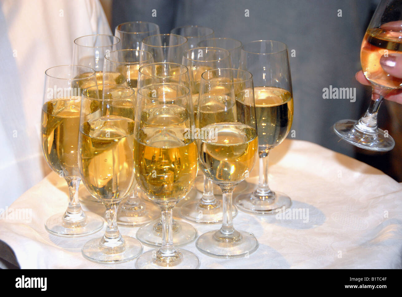 A waitress pouring champagne - Stock Image