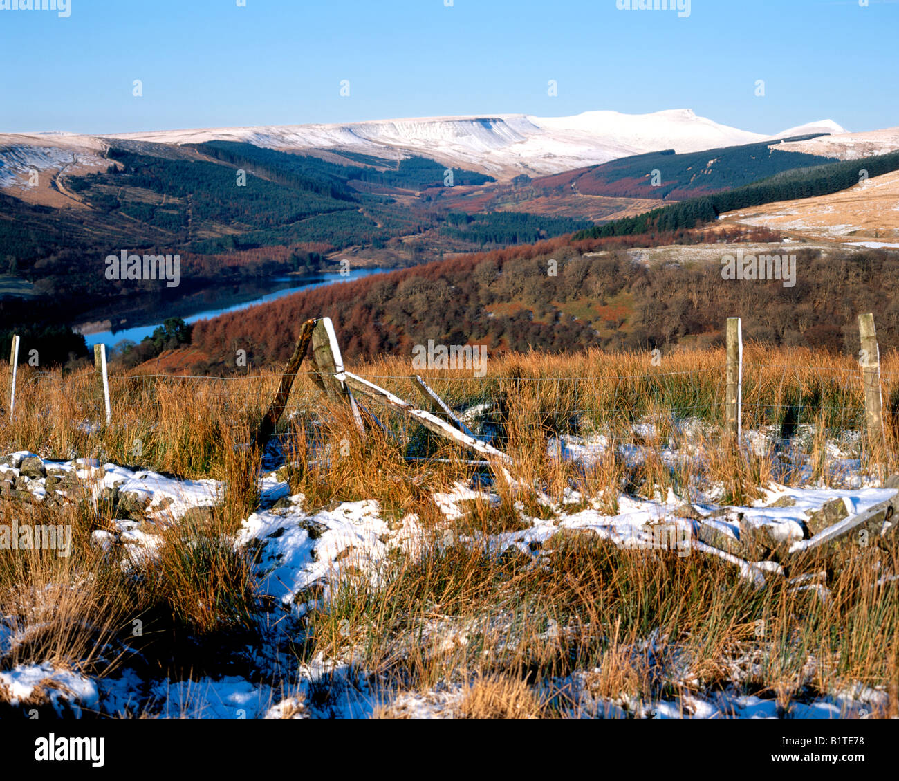 the brecon beacons from hillside dol y gaer brecon beacons national park powys wales Stock Photo