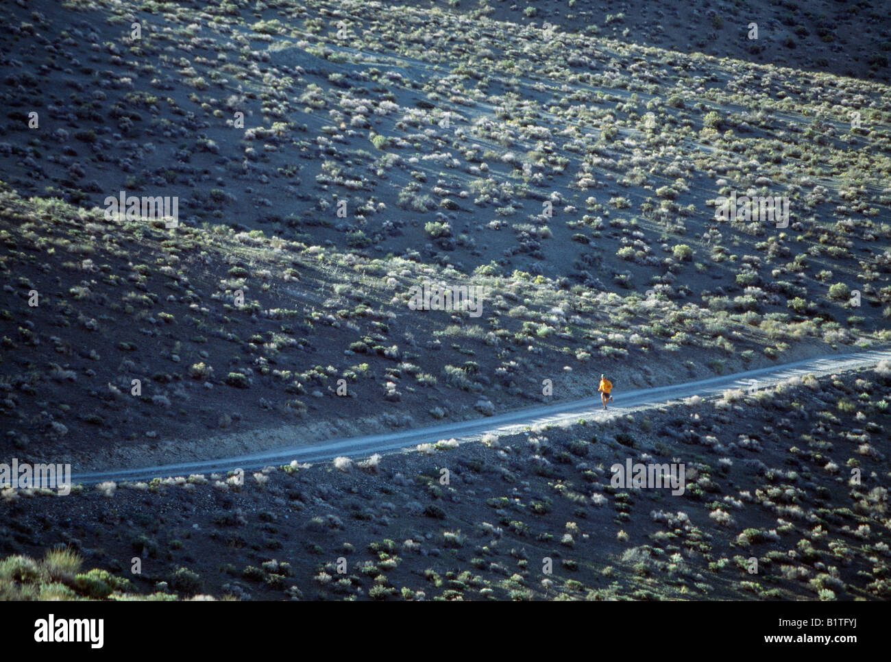 Lone  male trail runner in the Eastern Sierra Mountain, California Stock Photo