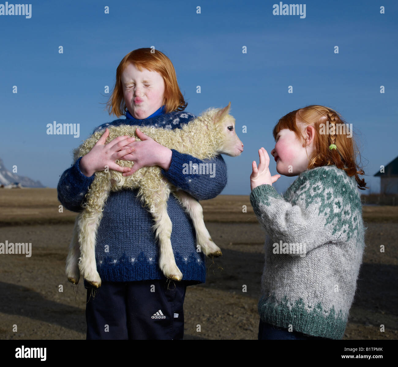 Red-headed sisters holding lamb, Hofn Iceland - Stock Image