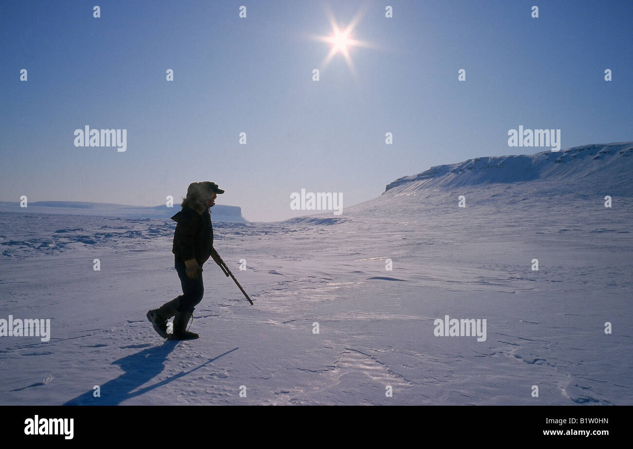Polar Bear tracking,  Franklin Island, Nunavut, Canada, North West Territories, Canada - Stock Image