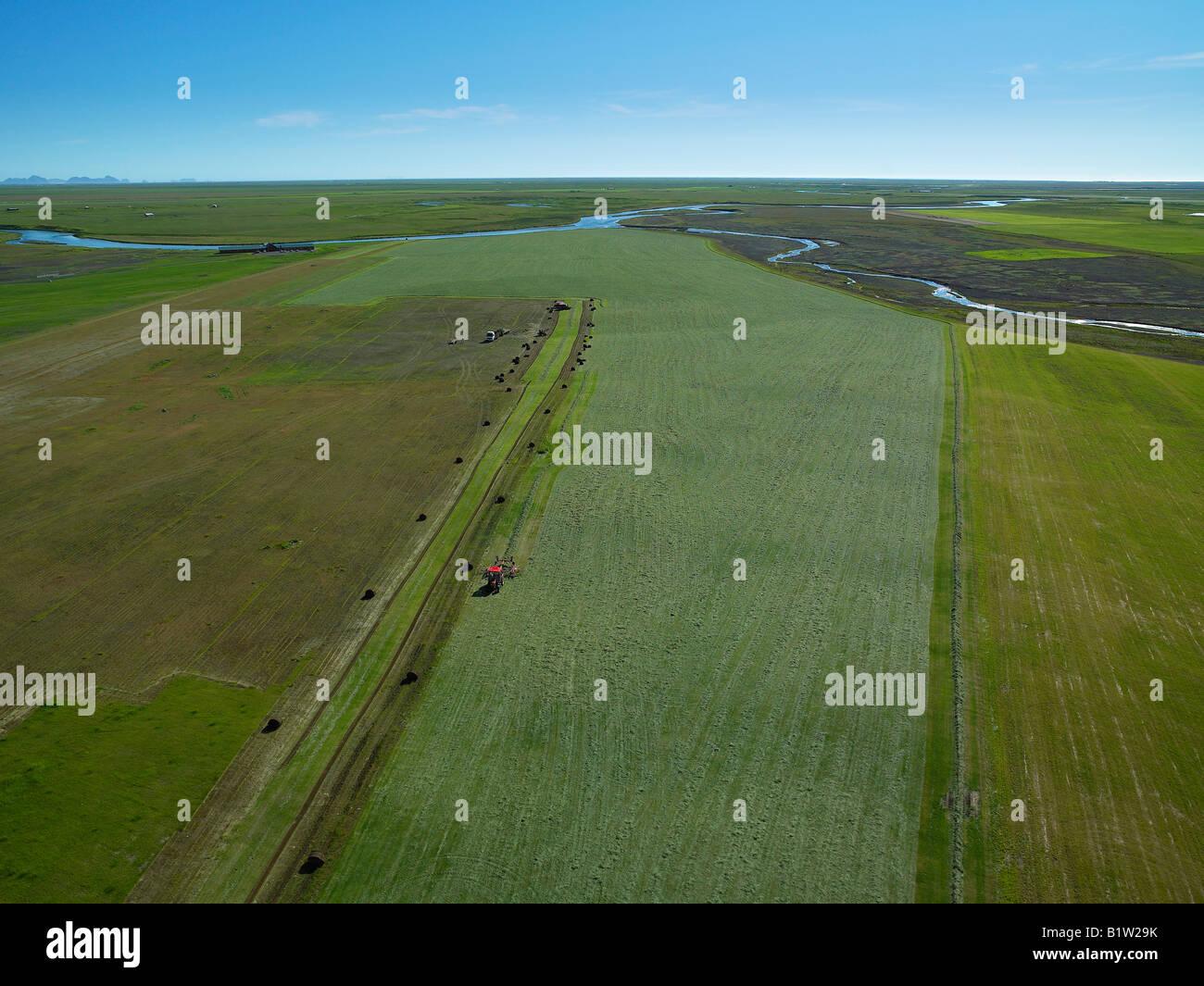 Hay Harvest, Iceland - Stock Image