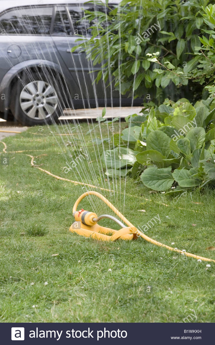 water sprinkler in garden - Stock Image