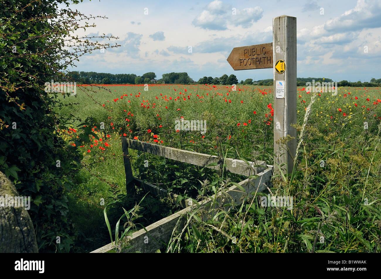Public footpath - Stock Image