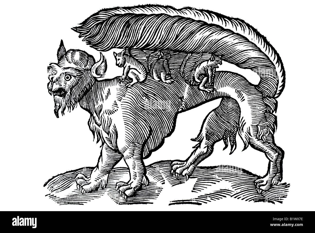 Das allerscheußlichste Thier / so tan, gesehenwerden / Su genannt / und in der Neuen Welt zu finden, Historia - Stock Image