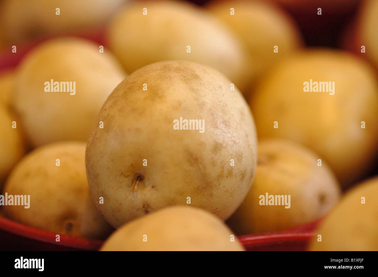 Food, Pears, closeup - Stock Image