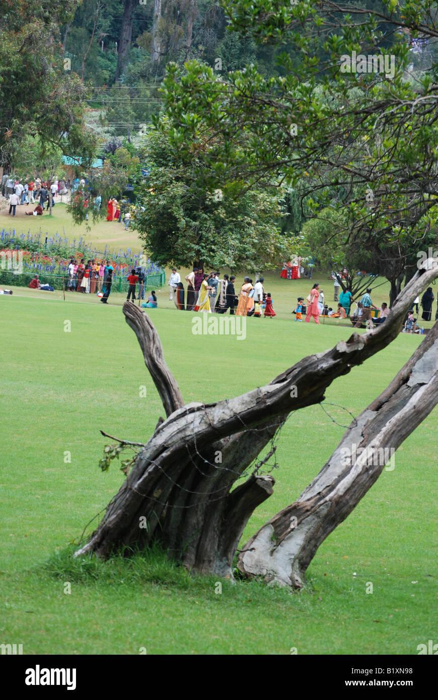 the beautyfull view from -otty,tamilnadu india - Stock Image