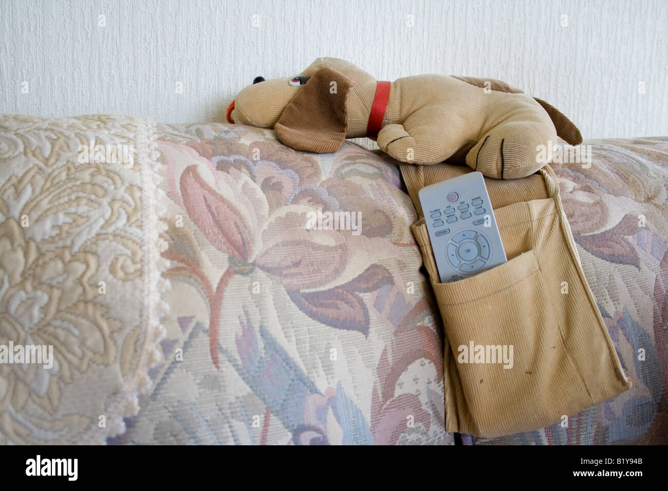 Corded Dog Remote Control Holder On Sofa Stock Photo 18424907 Alamy