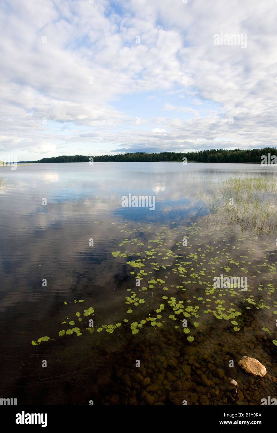 Scene from Lake Suontee Finland - Stock Image