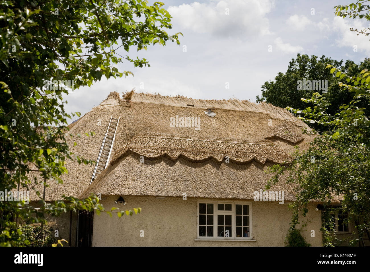 Thatching in progress on old country cottage at Neatishead Norfolk - Stock Image