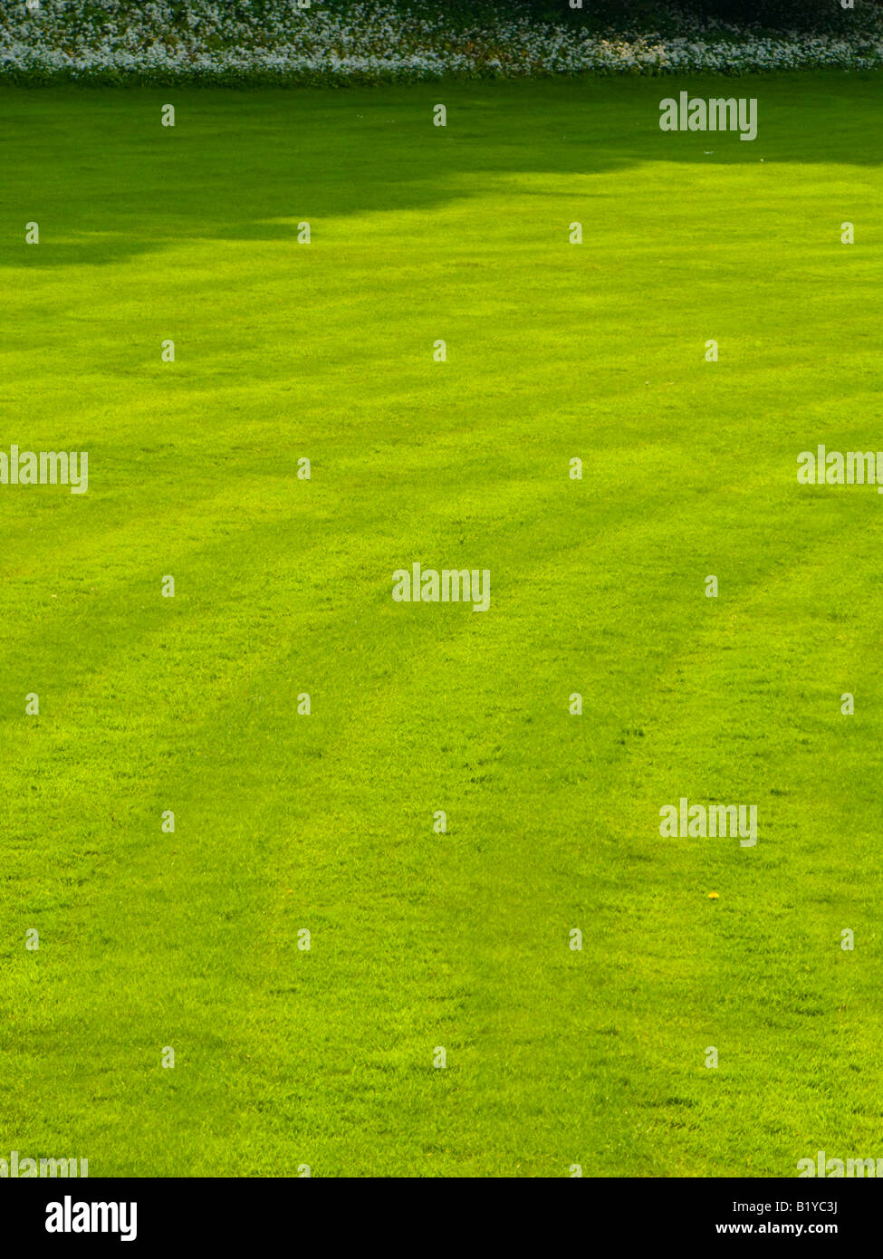 Lawn with mowing lines in the grass - Stock Image