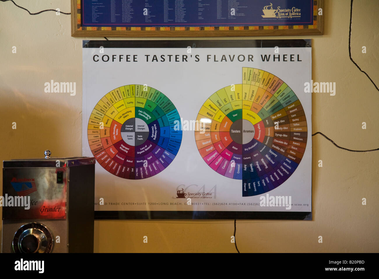 ILLINOIS Riverwoods Tasting wheel for sampling coffee taster flavor wheel with colors and descriptive words - Stock Image