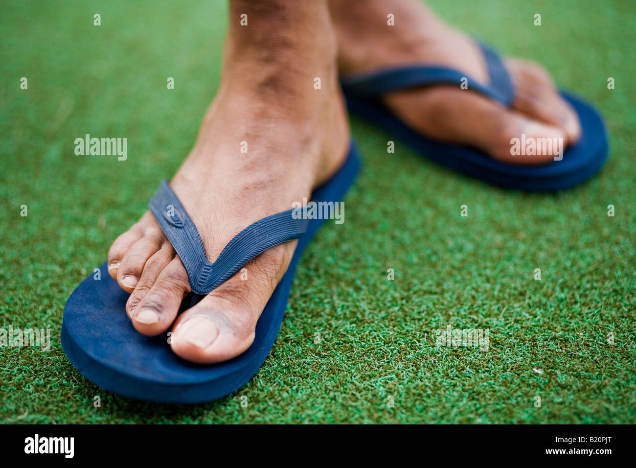 f25f120c814ea Front view of man s feet wearing blue flip flops Stock Photo ...