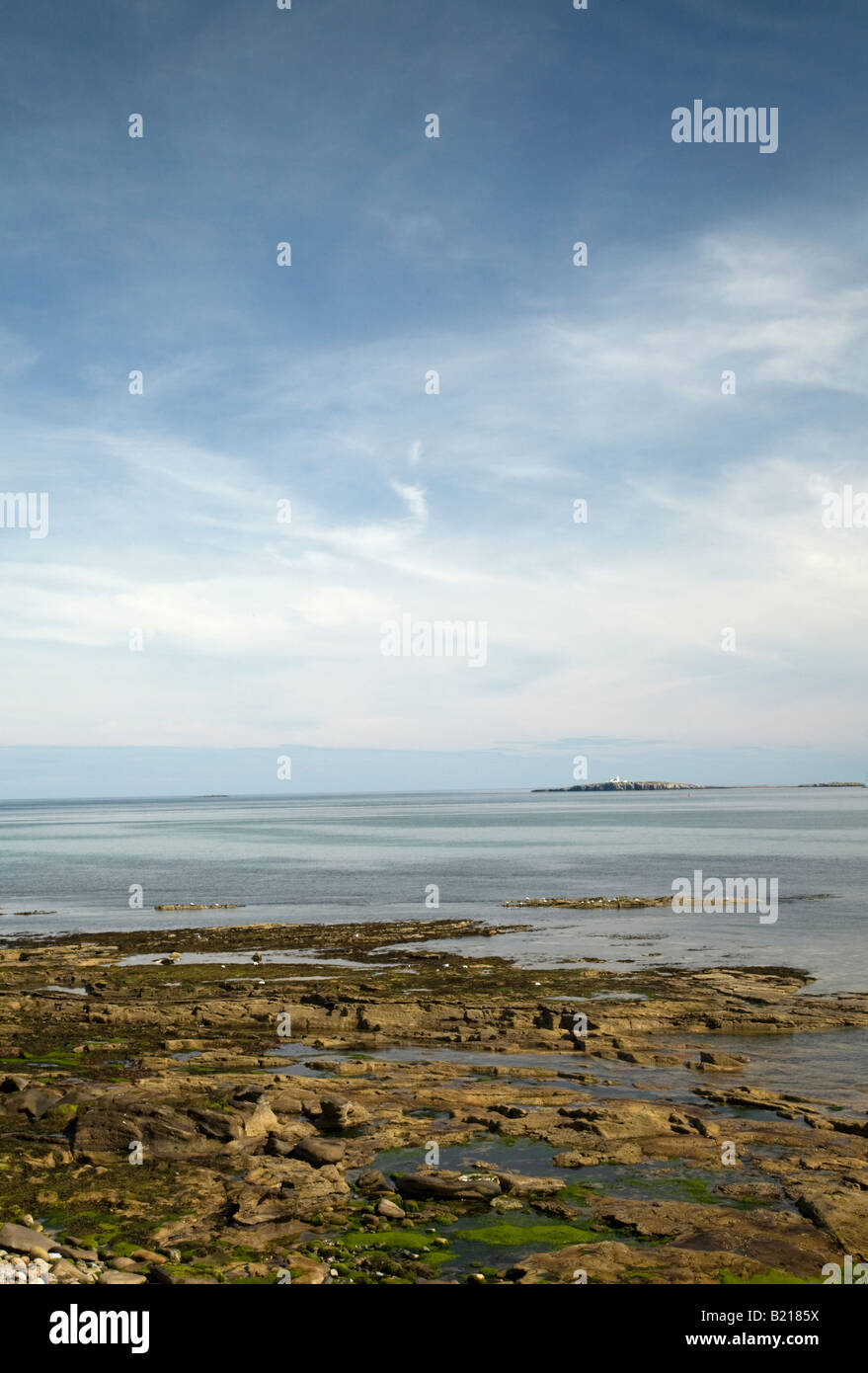 Shore at Seahouses, Northumberland with view towards the Farne Islands Stock Photo