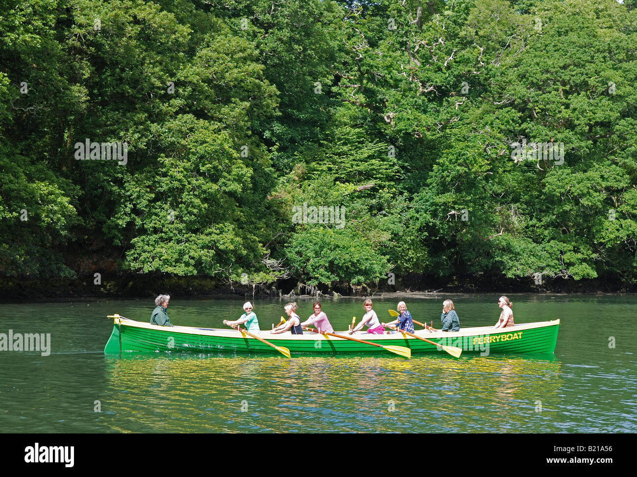 A female cornish gig rowing team training on the helford river in cornwall, uk. - Stock Image