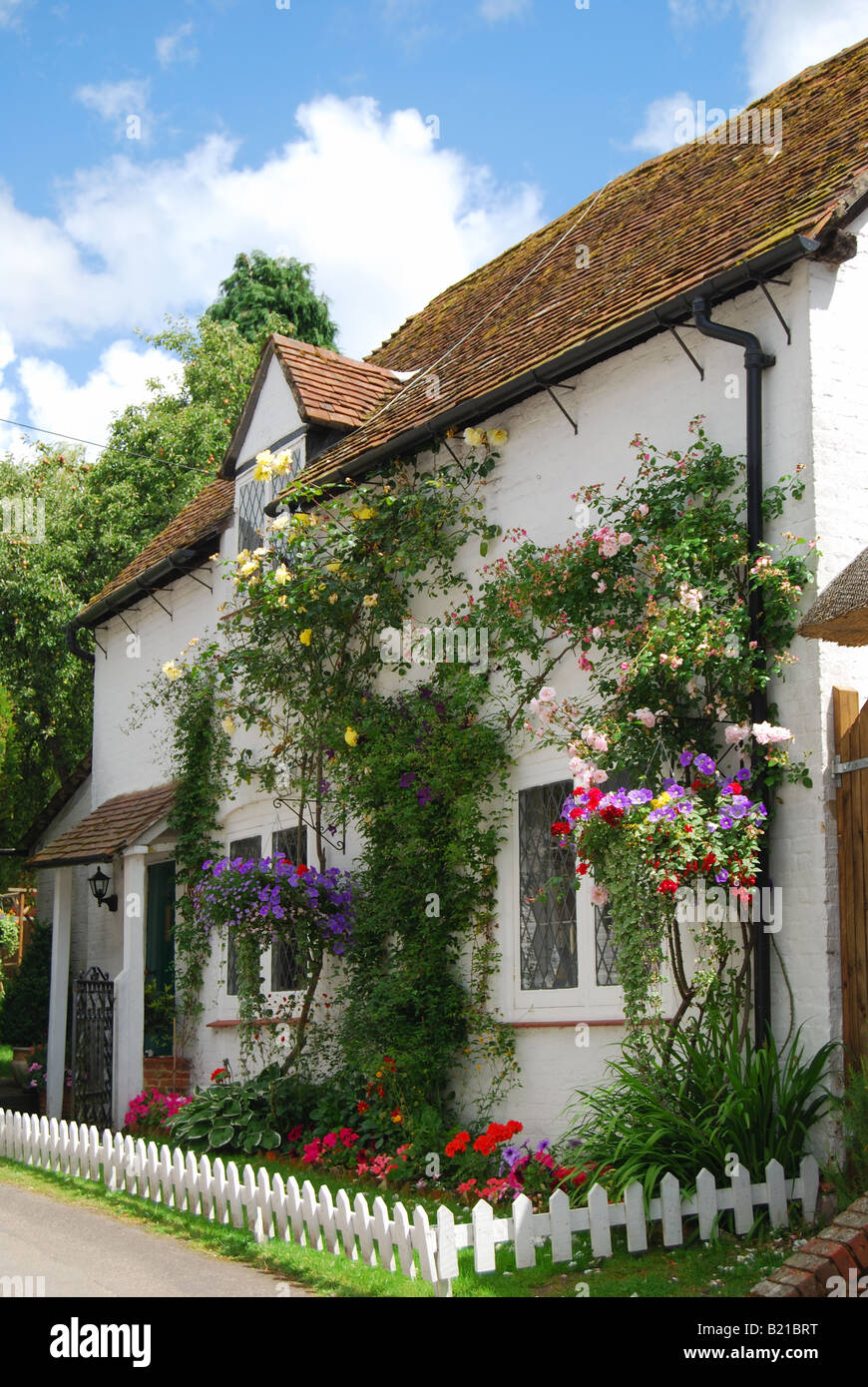 Country cottage, Micheldever, Hampshire, England, United Kingdom - Stock Image