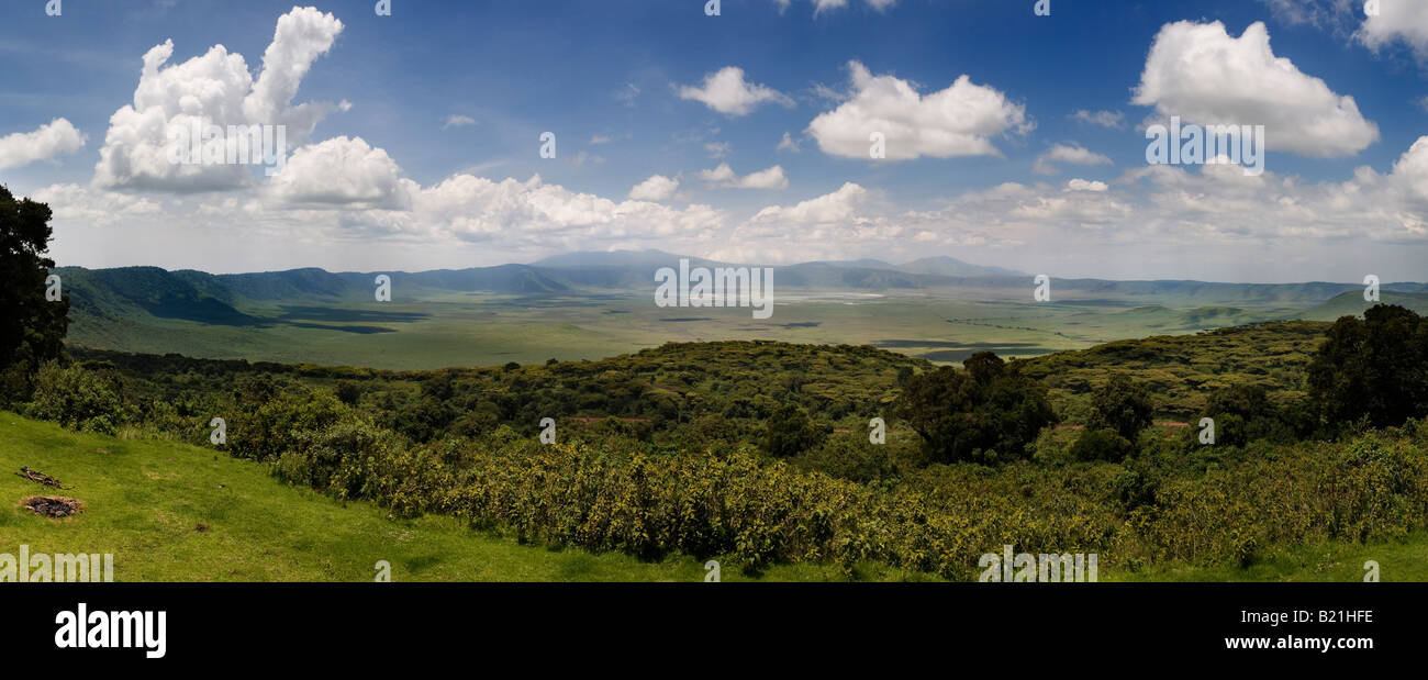 Panoramic View of Ngorongoro Crater Tanzania - Stock Image
