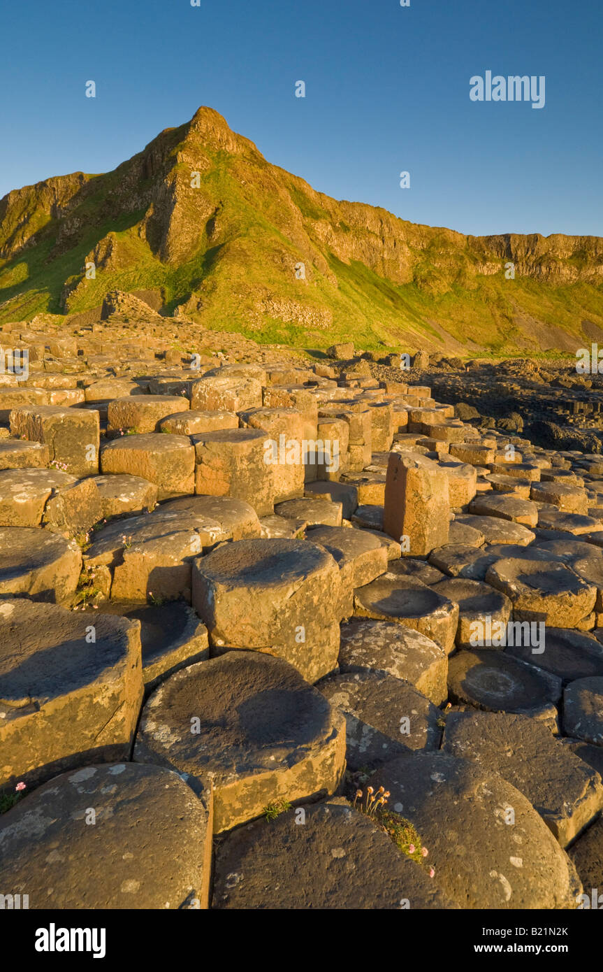 Giants Causeway north Antrim coastal path County Antrim Northern Ireland GB UK EU Europe - Stock Image