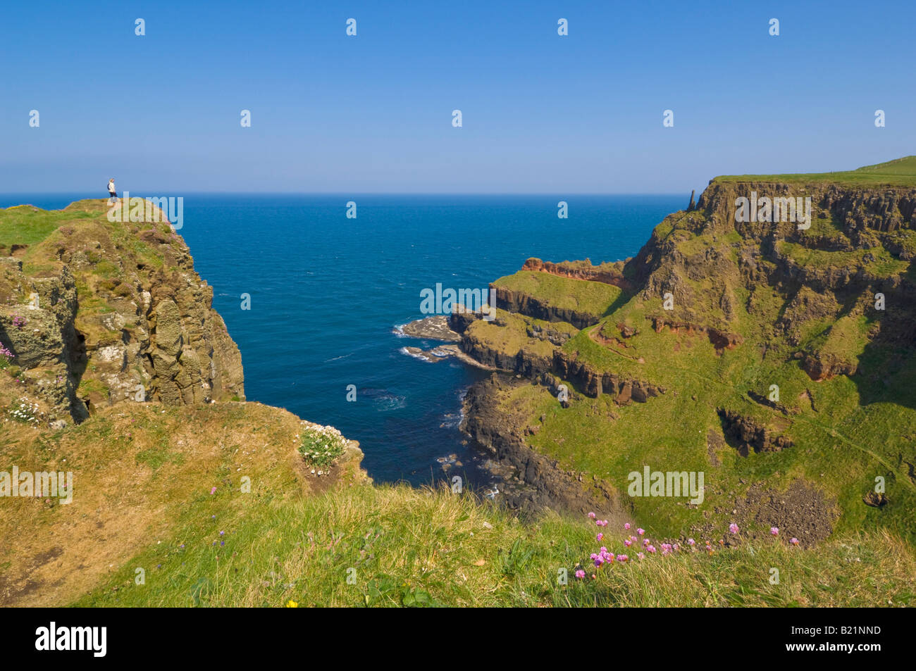 Giants Chimney tops Giants Causeway north Antrim coastal path County Antrim Northern Ireland GB UK EU Europe - Stock Image