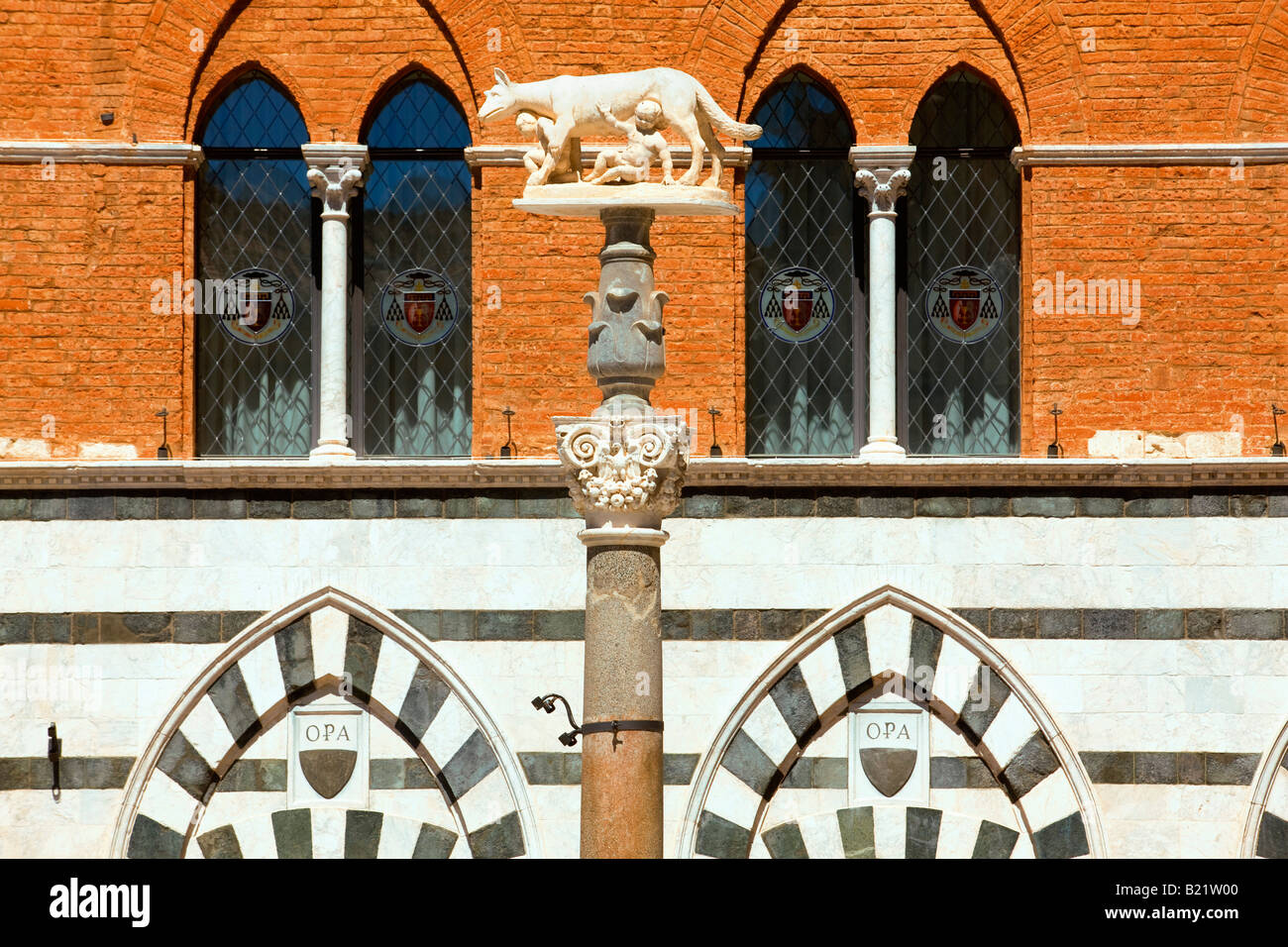 statue of Remus and romulus with Wolf in Siena - Stock Image