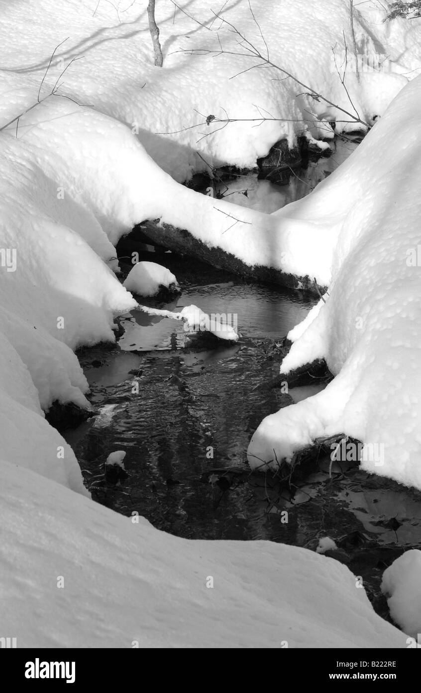The winter series, images that capture the essence of the Canadian winter experience delicate winter stream in the - Stock Image