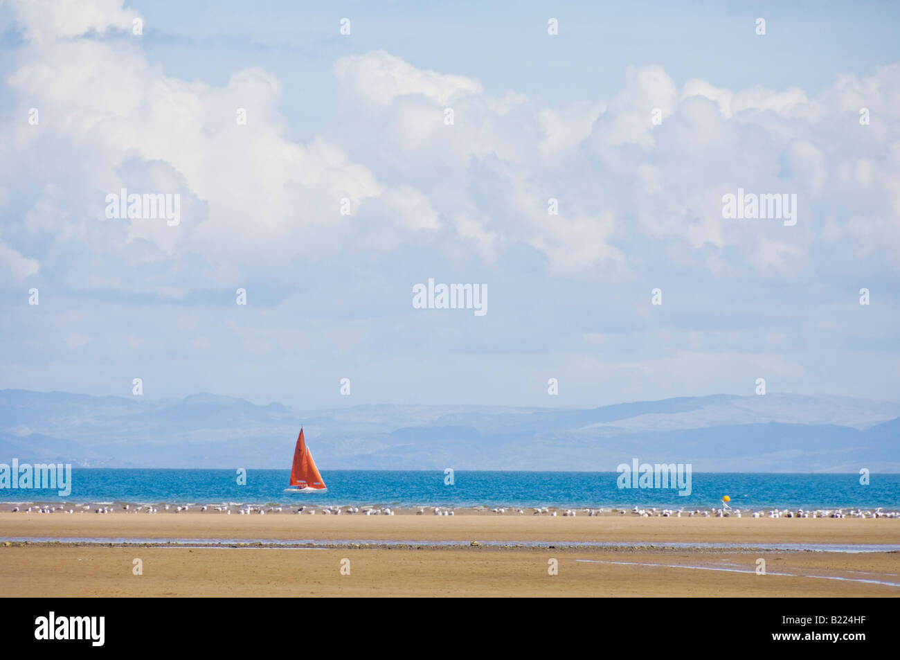 Red sails of a yacht in Cardigan bay off the beach the Warren Abersoch on the Llyn Lleyn peninsula Gwynedd North - Stock Image