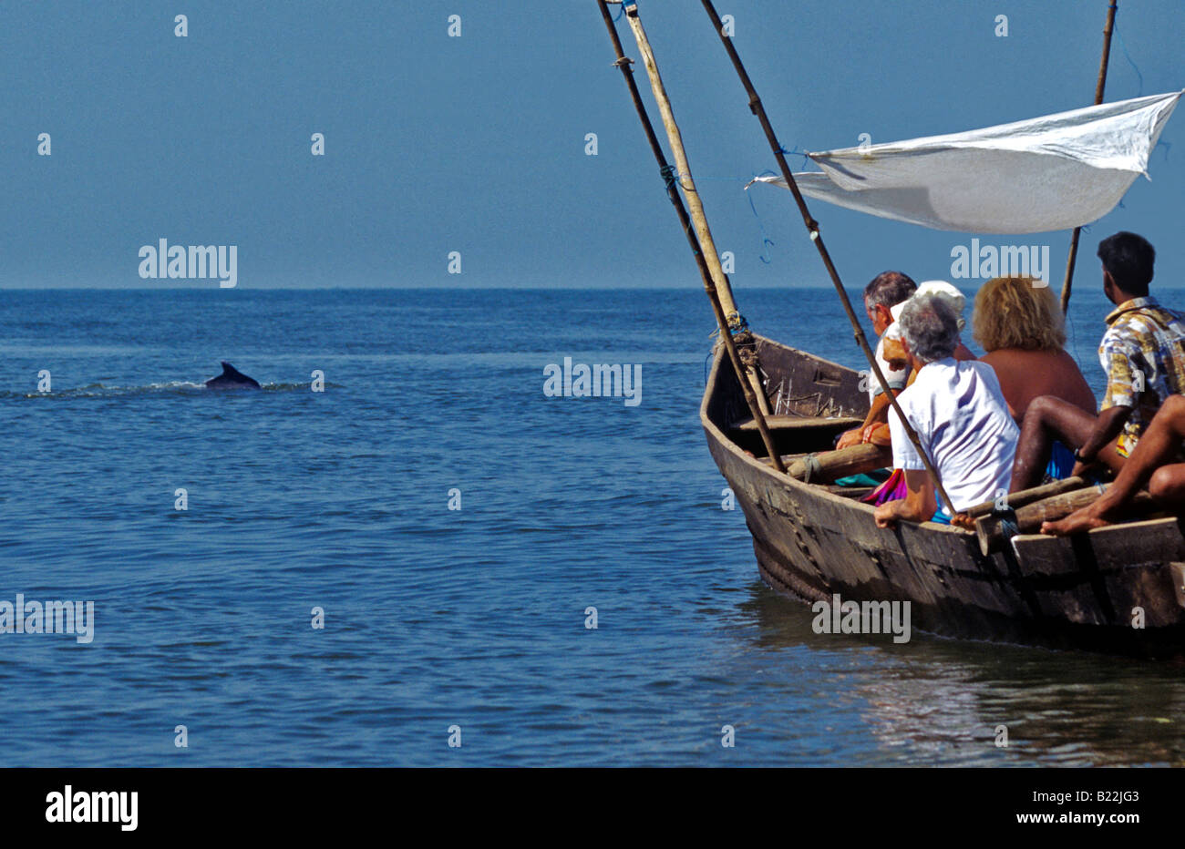 0969 Dolphin watching Goa State India Stock Photo