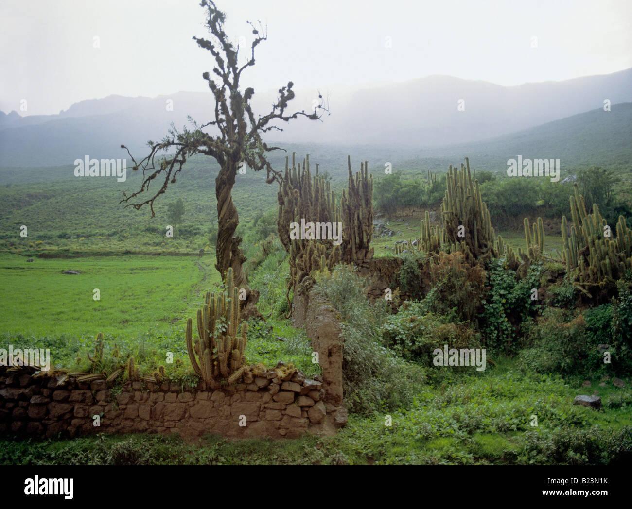 rain shower arable farm land urubamba valley andean highland peru - Stock Image