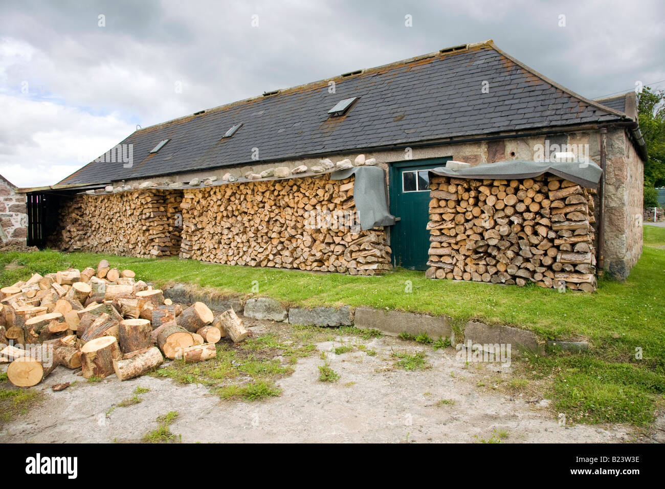 Scottish Timber Industry, Scotland uk - Stock Image