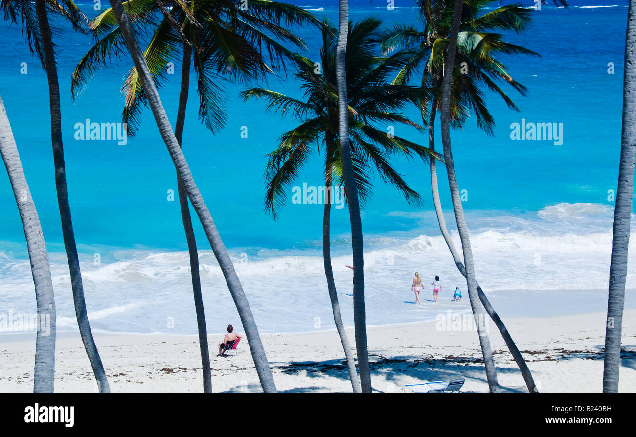 Secluded Palm fringed beach at Bottom Bay on the Southeast coast of Barbados West Indies March 2008 - Stock Image