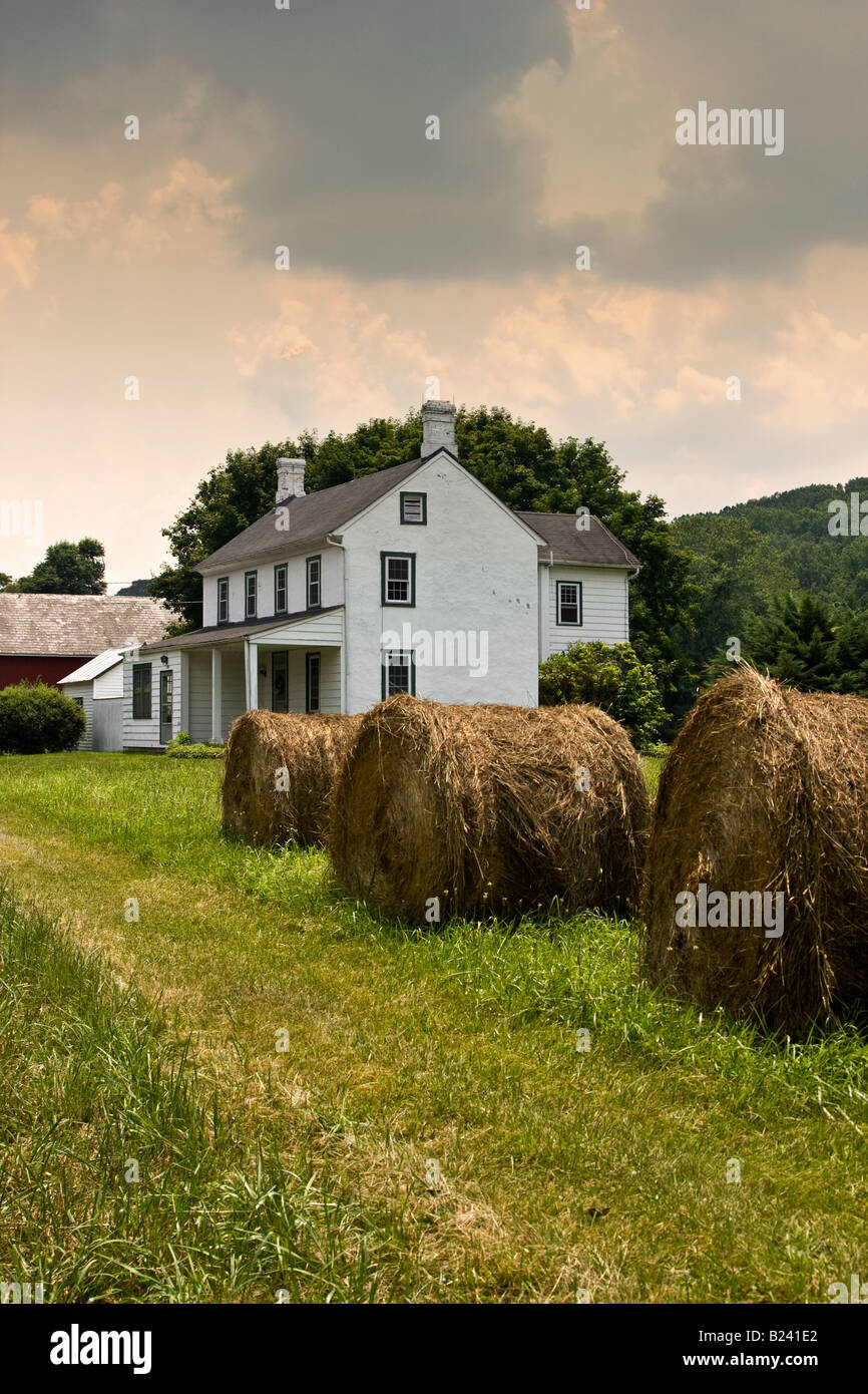 Charming white rural farmhouse in hay field - Stock Image