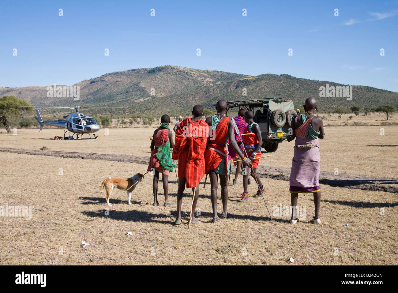 Curious young Masai Warriors arrive to greet a helicopter landing near their village in the Masai Mara of Kenya - Stock Image