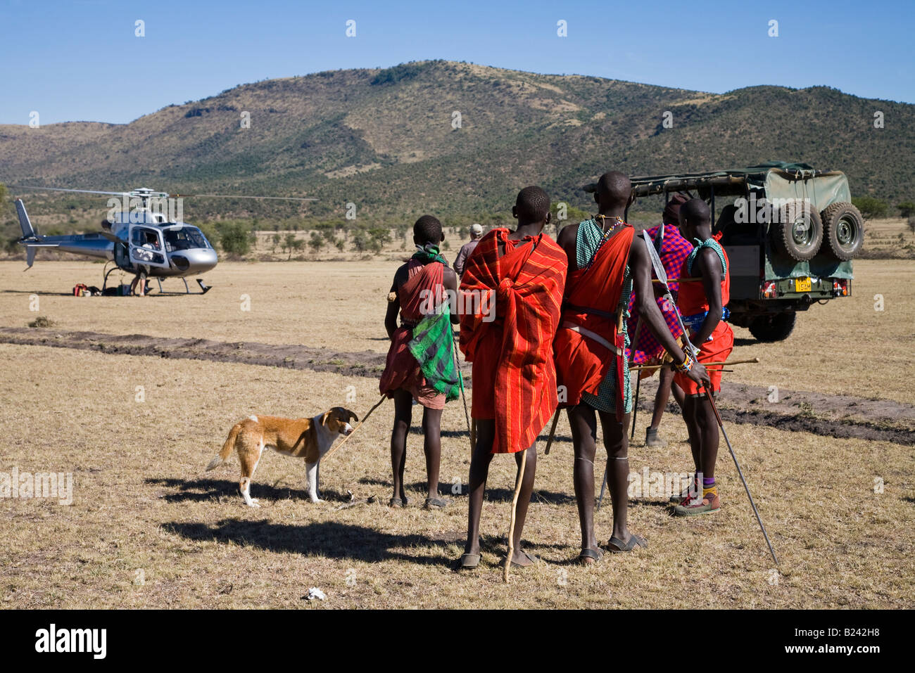 Curious young Masai Warriors arrive with spears & dog to greet helicopter landing near their village in the - Stock Image