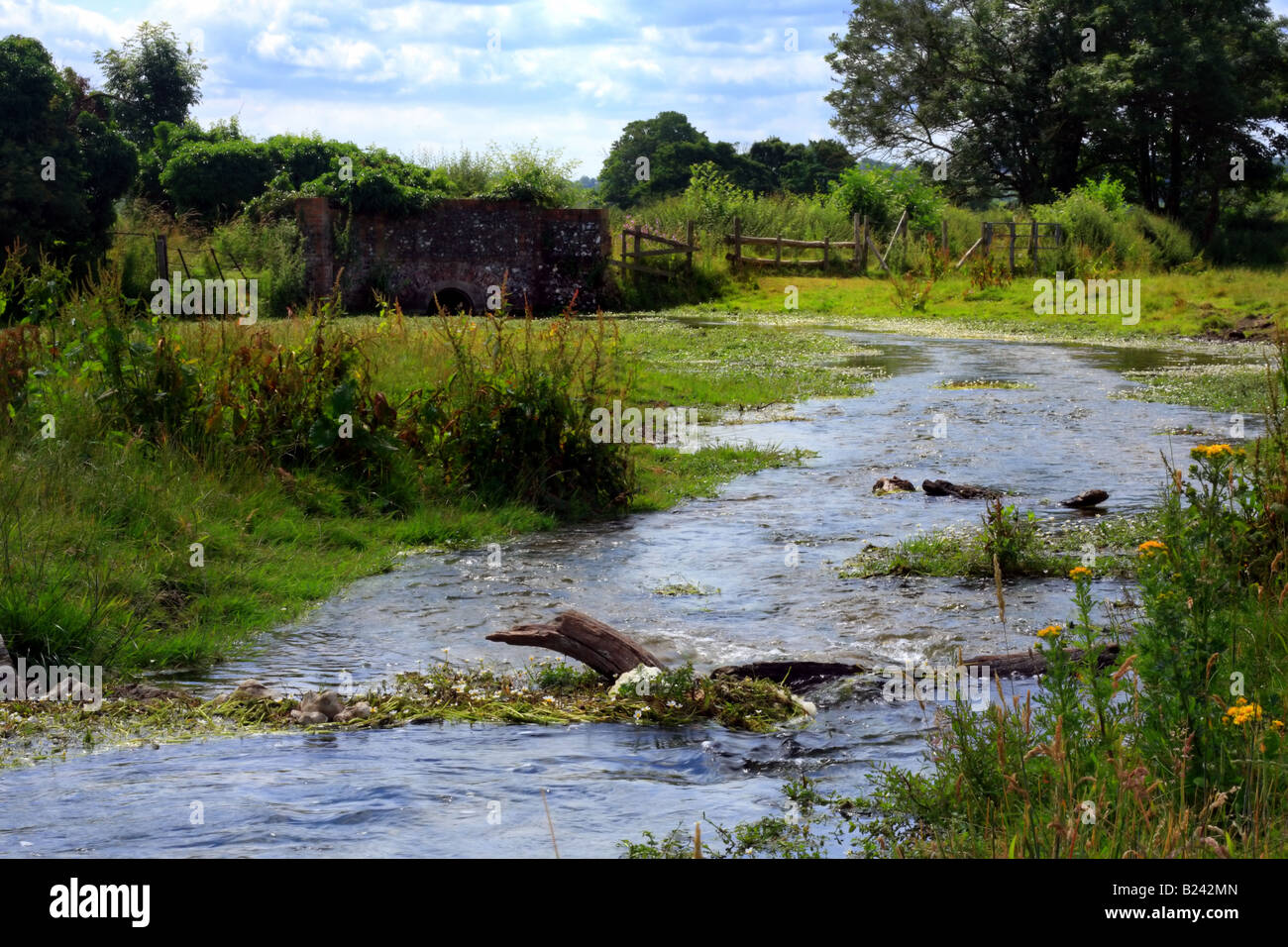 Stream on outskirts of Hambleden Village - Stock Image