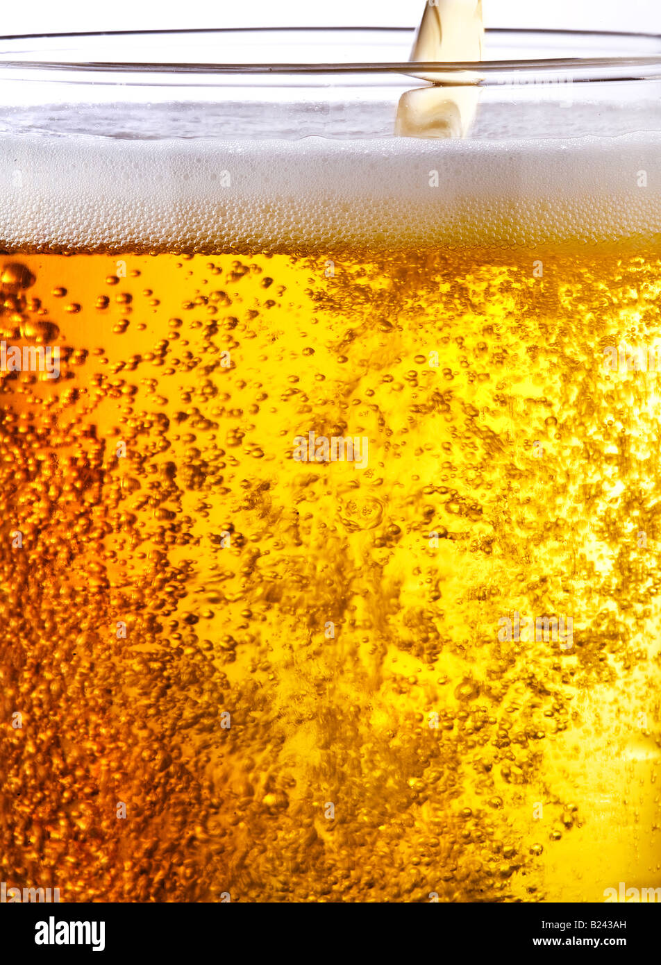 Pouring of beer - Stock Image
