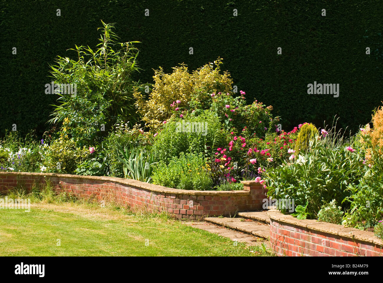 Mixed raised herbaceous and shrub border in July - Stock Image