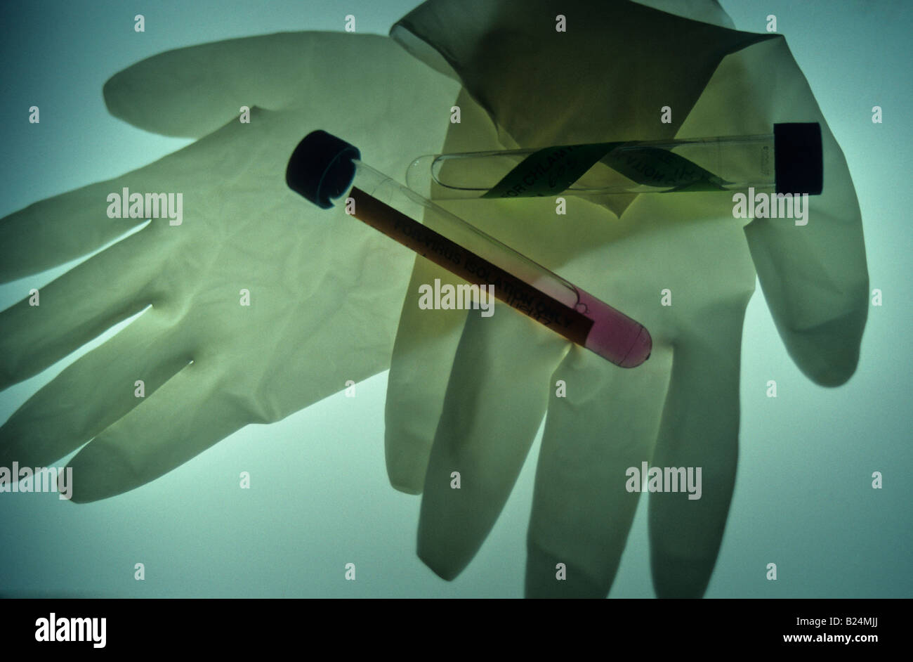 SURGICAL GLOVES AND TEST TUBES MEDICAL ICON - Stock Image