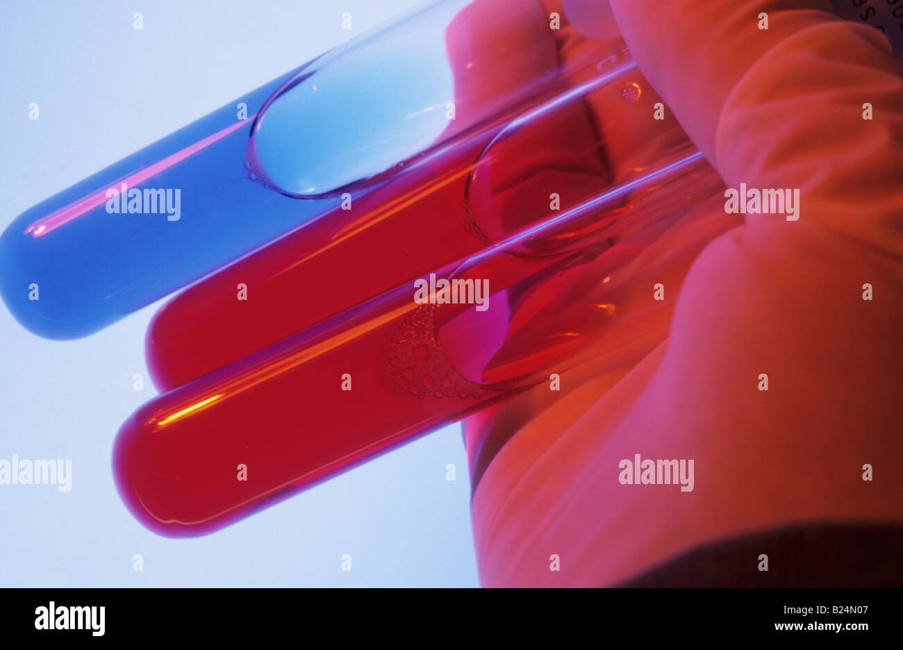 CLOSE UP GLOVED HAND HOLDING TEST TUBES - Stock Image