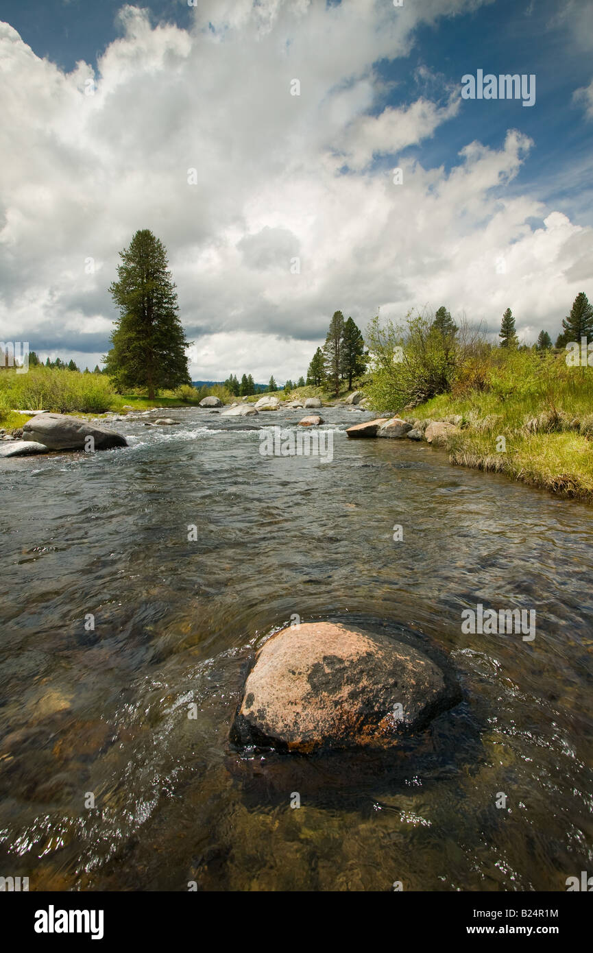 Truckee River California - Stock Image