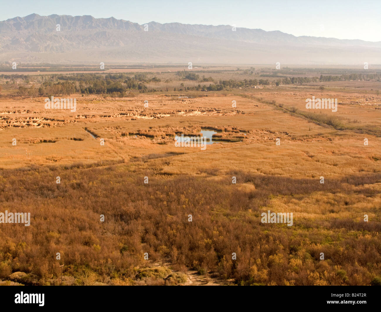Humid grassland paddocks with Precordillera in the background, in their winter aspect, Zonda, San Juan. - Stock Image