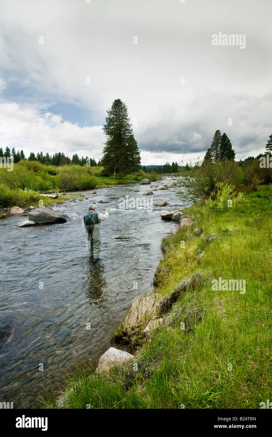 Trout fishing Truckee California - Stock Image